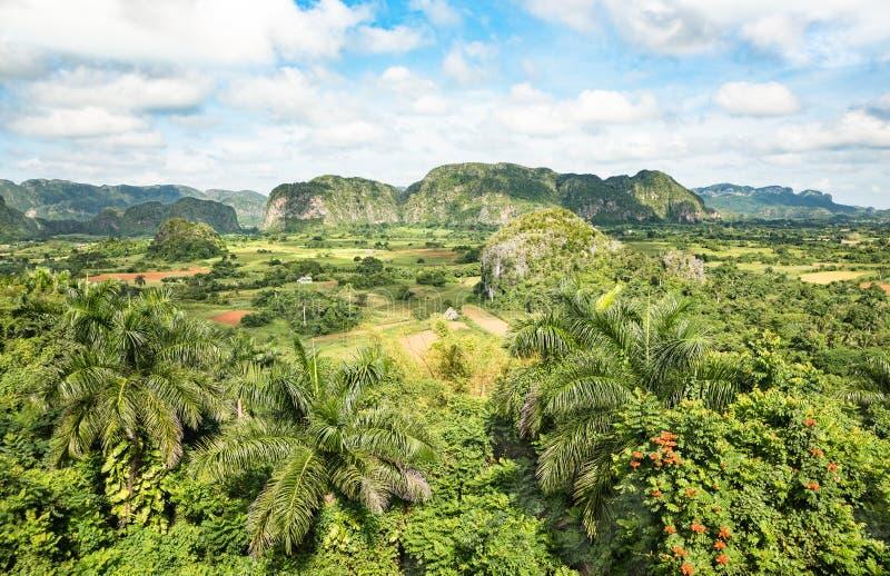 Dal av Val Vinales nära Pinar del Rio i Kuba fotografering för bildbyråer