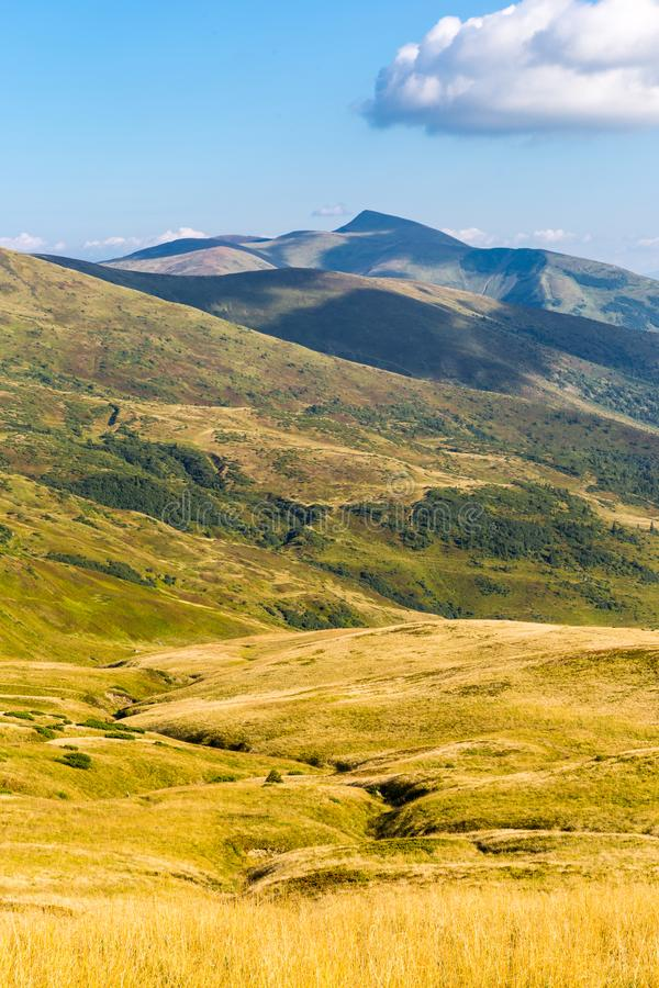 Dal för Carpathian berg royaltyfria foton