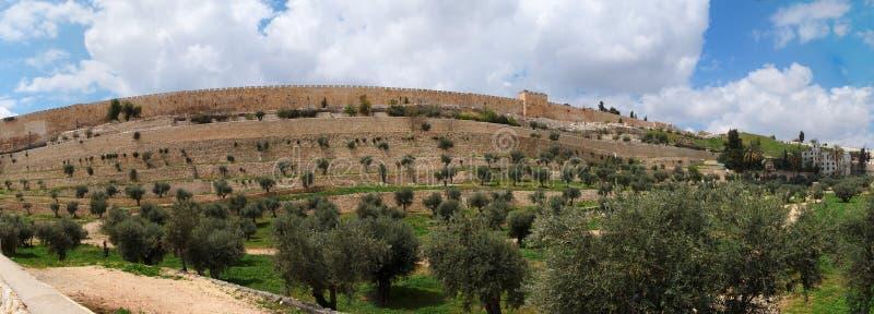 dal för tempel för jerusalem kidronmontering royaltyfri bild