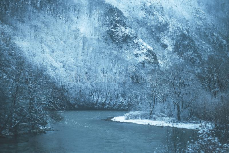 Dal fiume di inverno fotografia stock