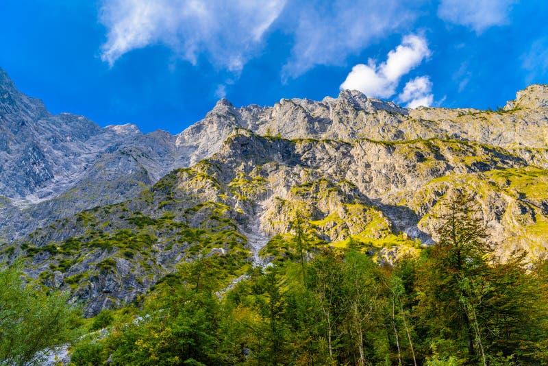 Dal i fj?ll?ngberg n?ra Koenigssee, Konigsee, Berchtesgaden nationalpark, Bayern, Tyskland arkivbilder