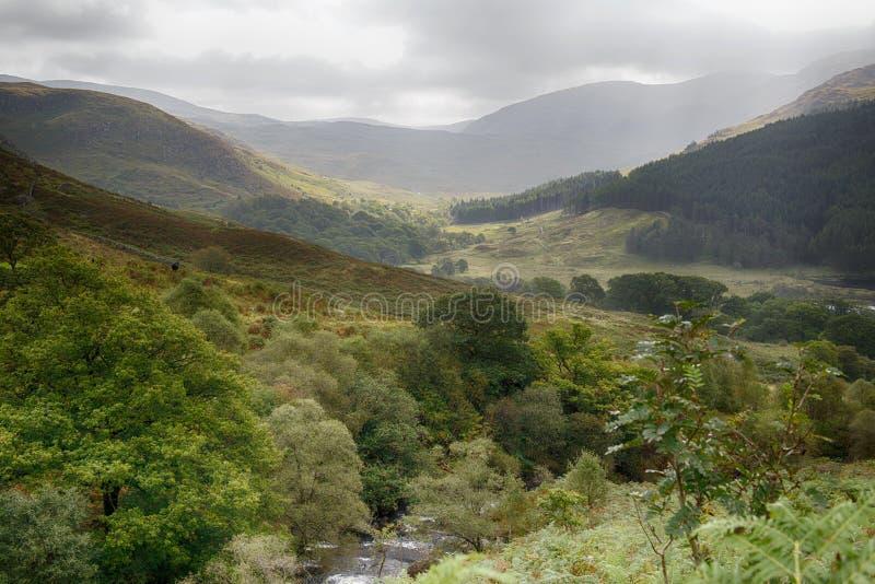 Dal i Galloway Forest Park arkivbild