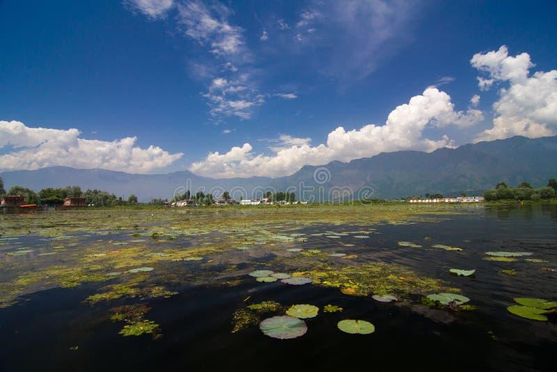 Dal Lake royalty free stock photo