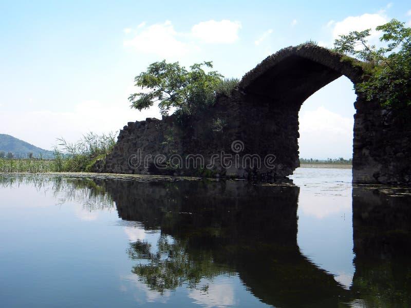 Dal Lake, Srinagar, India immagine stock