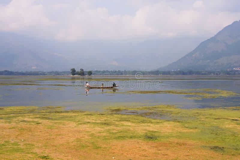 Dal Lake, Srinagar, Jammu Kashmir, India royalty-vrije stock fotografie