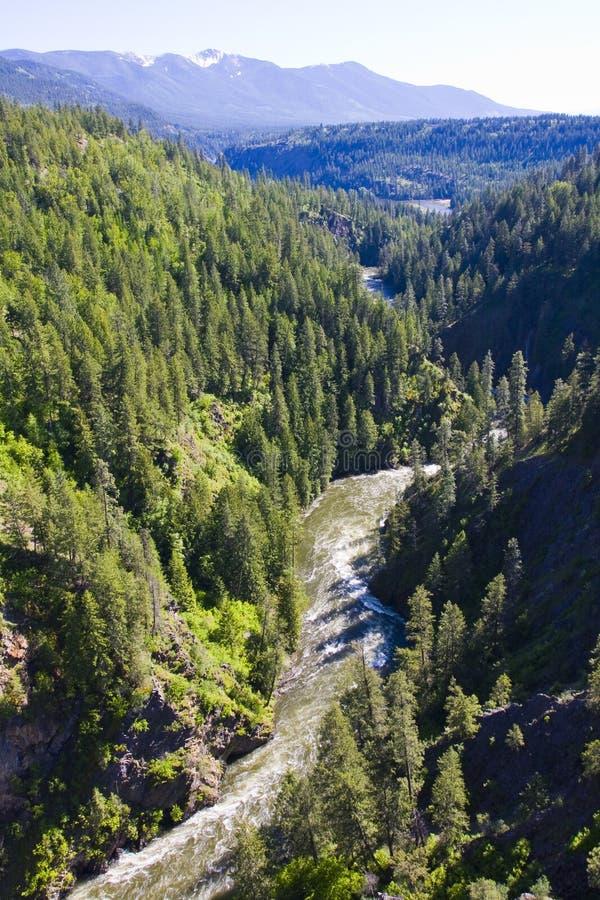 Dal ponticello sopra la gola Idaho del nord del fiume di Moyie immagine stock