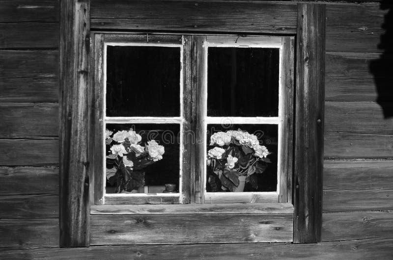 Dalarna rural noir et blanc image stock