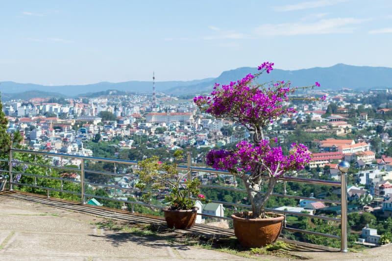 dalat Вьетнам стоковое изображение