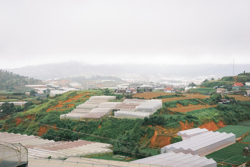 Dalat стоковые фото