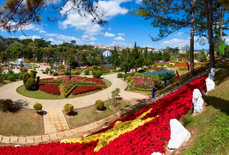 Dalat kwiatu ogródy fotografia royalty free