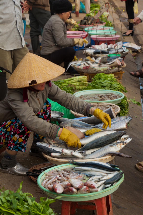 Dalat, straatvoet, lokale vissen andvegetable markt in Vietnam royalty-vrije stock fotografie