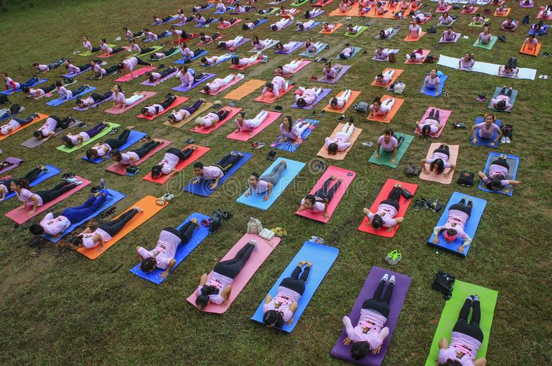 Download Big Group Of Adults Attending A Yoga Class Outside In Park Editorial Stock Image
