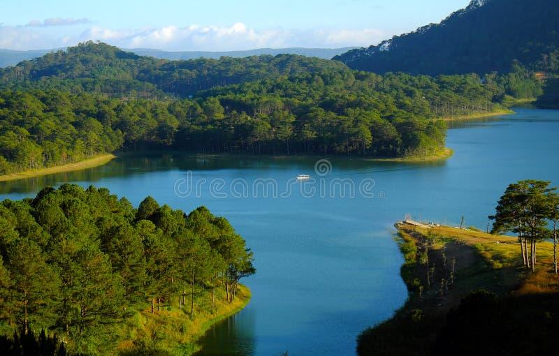 Dalat, Vietnam, voyage d'eco, forêt de pin, Lat du DA photographie stock libre de droits