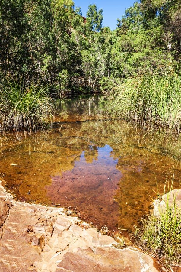 Dale Gorge Australia imagen de archivo