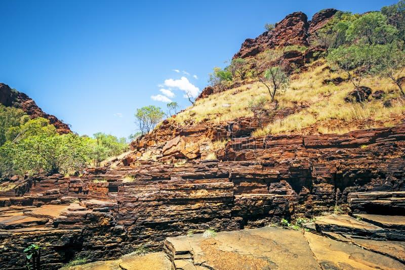 Dale Gorge Australia royaltyfri bild