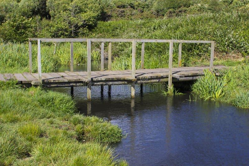 Daleki drewniany footbridge przy końcówką haczyka pasa ruchu uzdy ścieżka blisko Titchfield błonia Anglia zdjęcia royalty free
