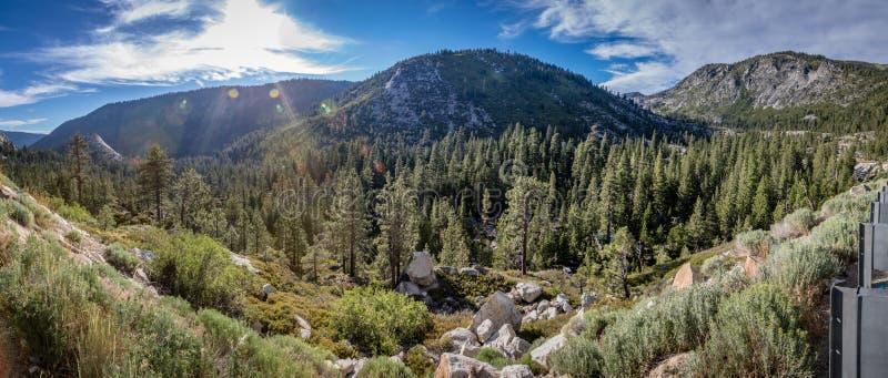 Dalen av sörjer mycket träd och solen som nästan får solnedgång nära Lake Tahoe royaltyfria bilder