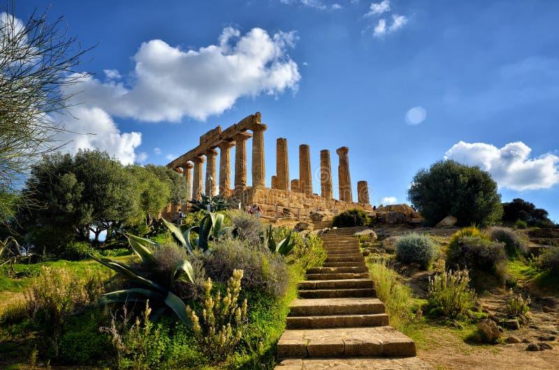 Dalen av templen är en arkeologisk plats i Agrigento, Sicilien, Italien royaltyfri foto