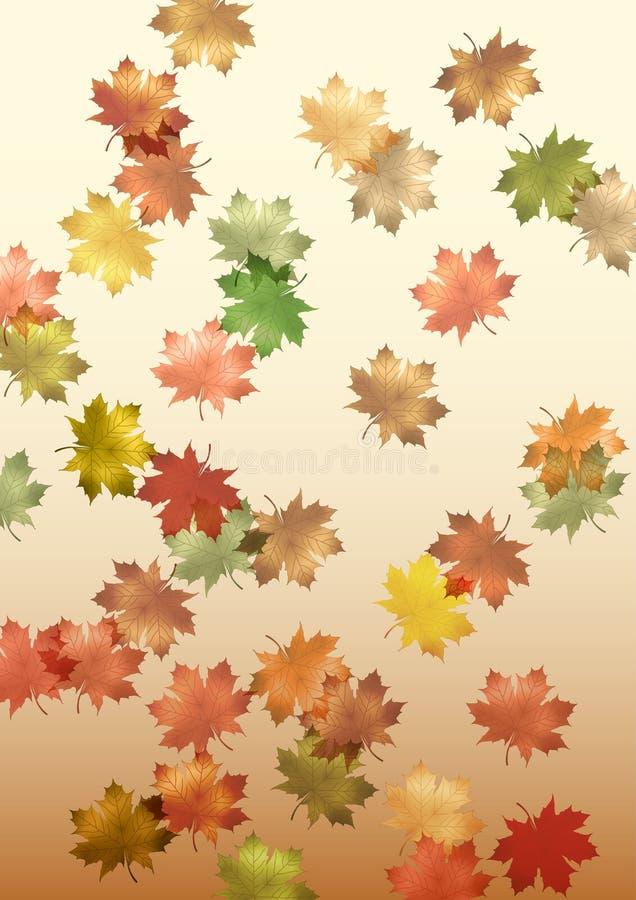 Dalende esdoornbladeren die in illustrator cs4 worden gemaakt vector illustratie