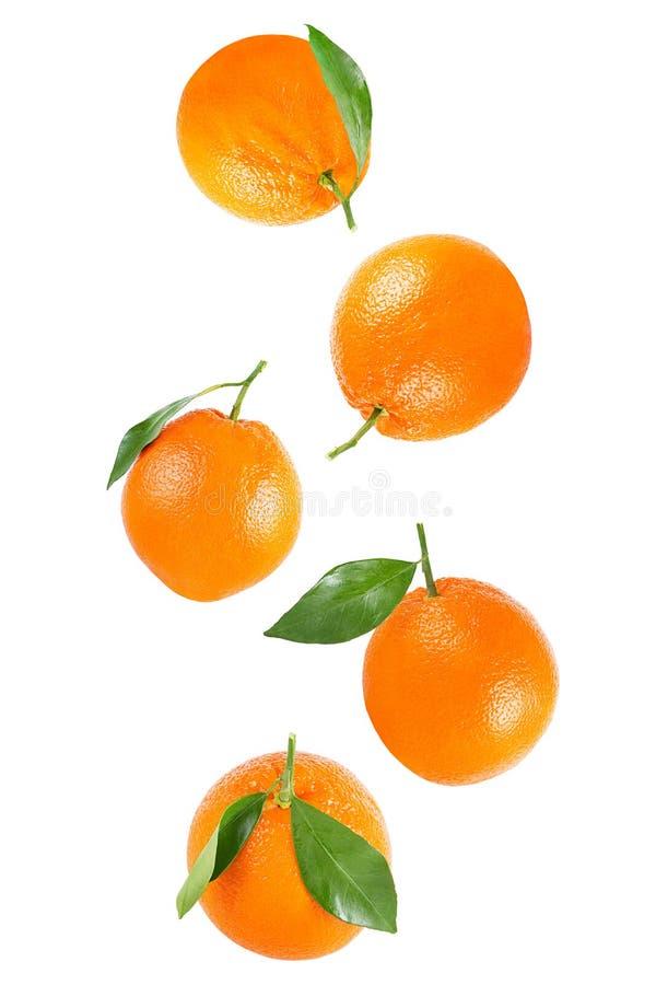 Dalende gehele die sinaasappel met blad op wit wordt geïsoleerd royalty-vrije stock afbeelding