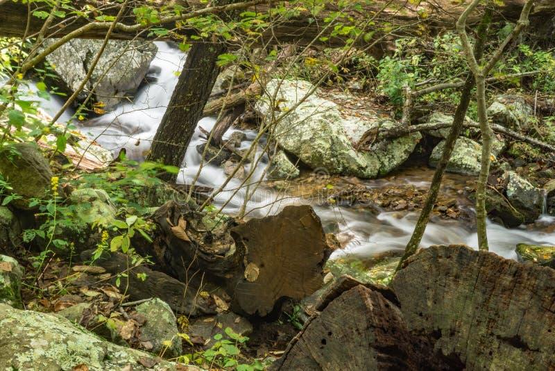 Dalende Waterkreek in Blauw Ridge Mountains royalty-vrije stock foto's