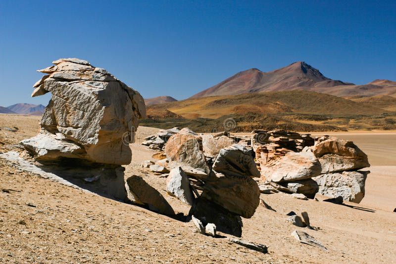 Dali desert royalty free stock photo