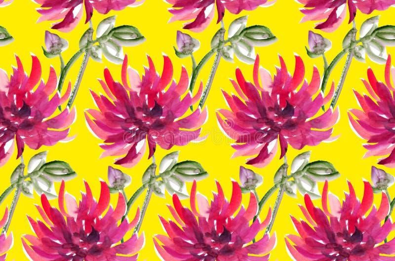 Dalia acquerella floreale aster, crisantemo illustrazione vettoriale