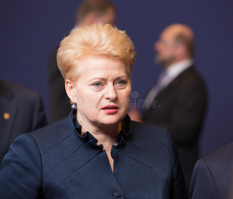 Dalia Grybauskaite royalty-vrije stock foto