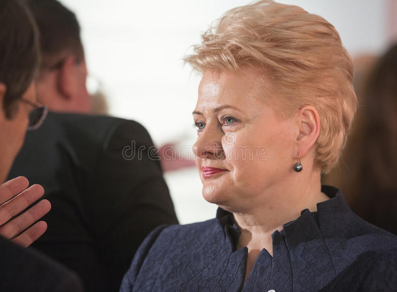 Dalia Grybauskaite royalty-vrije stock afbeelding