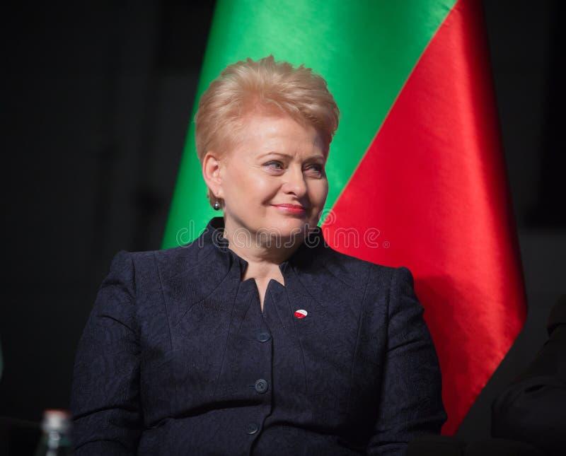 Dalia Grybauskaite stock afbeelding