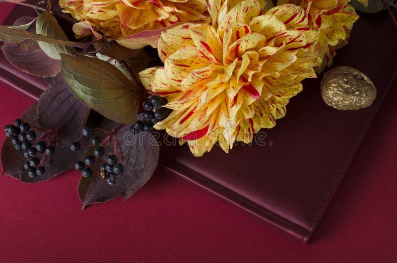 Dalias amarillas brillantes en un cuaderno contra fondo púrpura Otoño, concepto romántico de la caída imagen de archivo