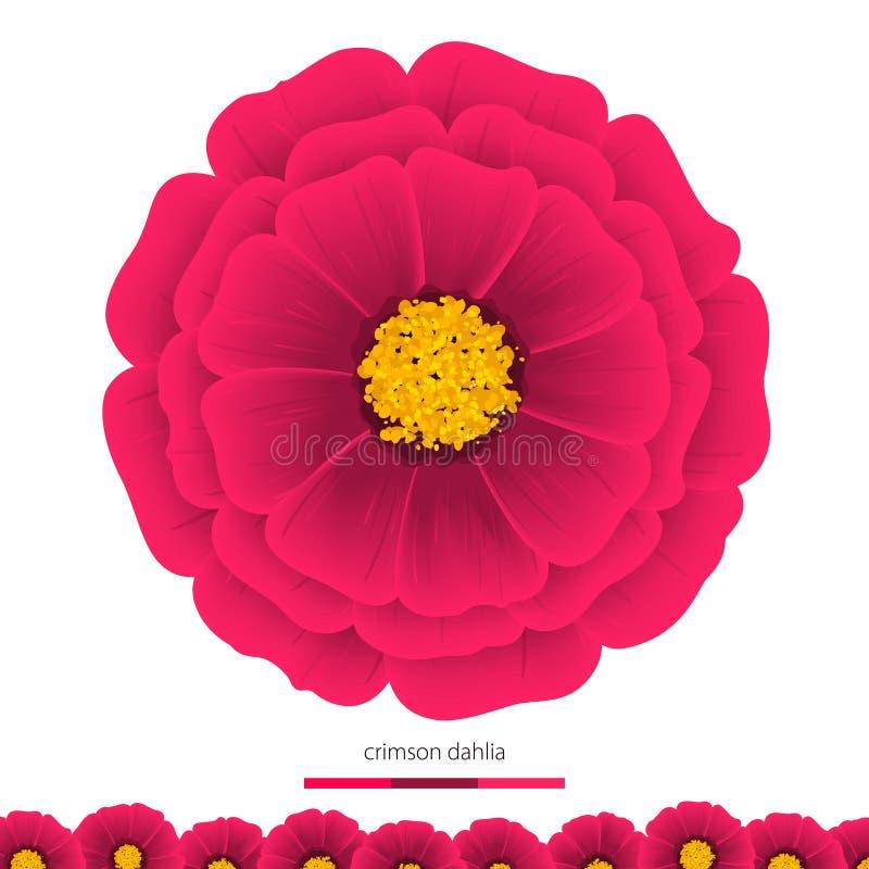 Dalias hermosas de las flores Elemento para el diseño ilustración del vector