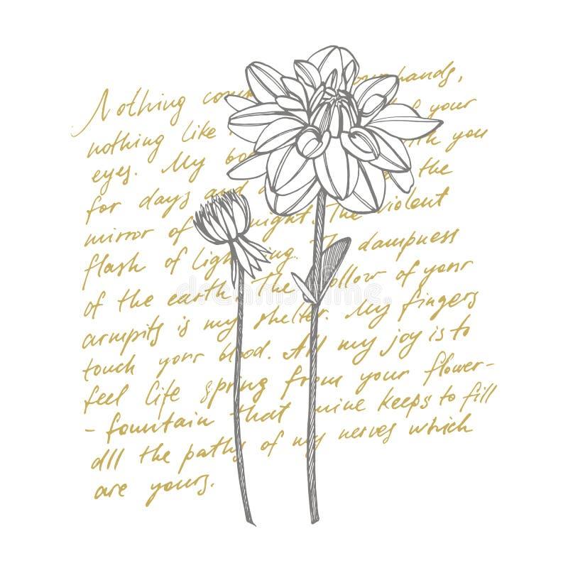 Dalias a mano de la tinta Elementos florales Ejemplos gráficos de las flores Ejemplo bot?nico de la planta manuscrito ilustración del vector
