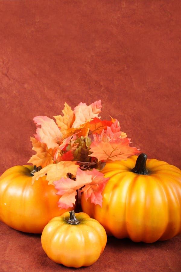 Daling - de Decoratie van de Dankzegging stock foto