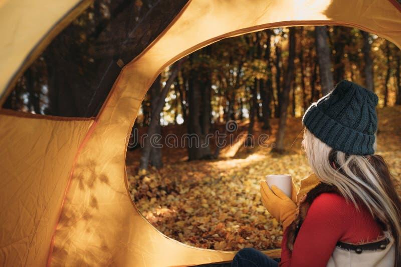 Daling het kamperen het bos gouden gebladerte van de dameherfst stock afbeeldingen