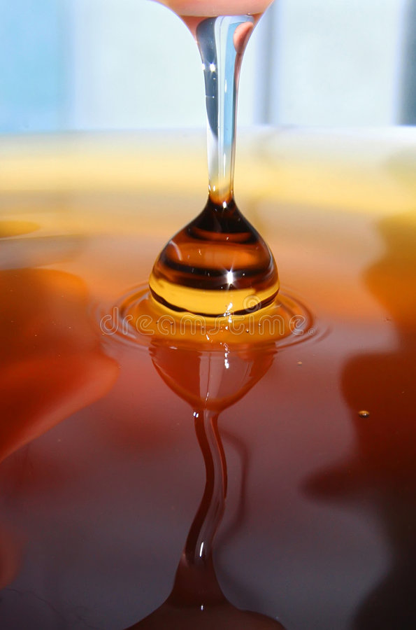 Daling van honing stock foto