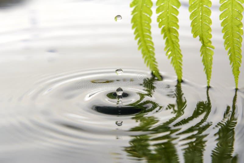 Daling van water royalty-vrije stock foto's
