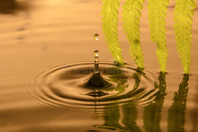 Daling van water royalty-vrije stock foto