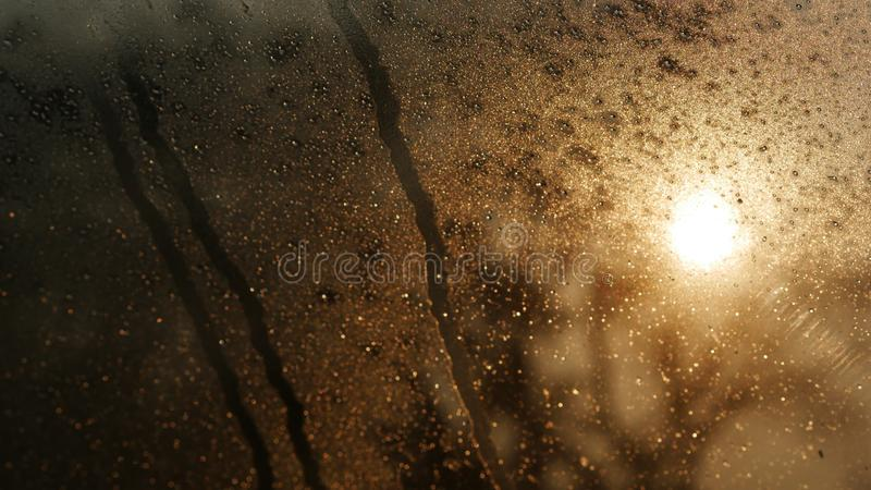 Daling van water op het glas stock fotografie