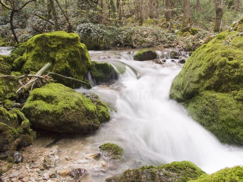 Dalingen op bergrivier royalty-vrije stock foto
