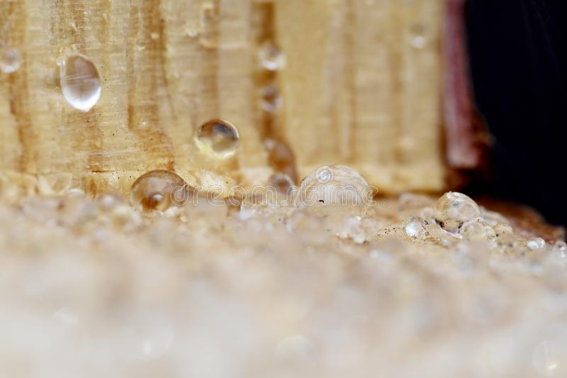 Dalingen van hars op gesneden hout stock foto