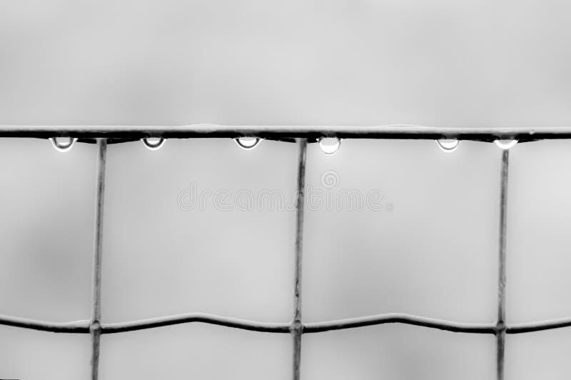 Dalingen van water op een omheining royalty-vrije stock fotografie