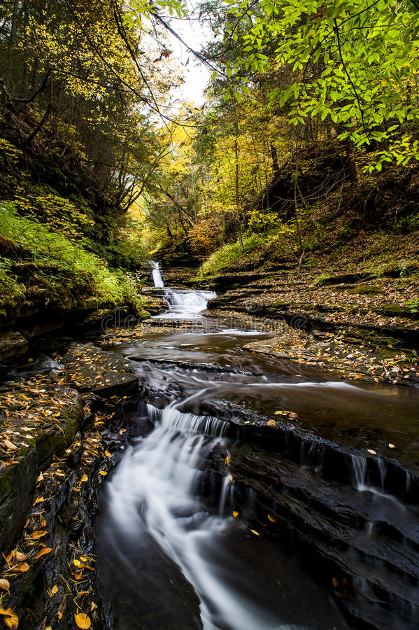Dalingen zij-qua-GA - Waterval en de Herfst/Dalingskleuren - New York royalty-vrije stock fotografie