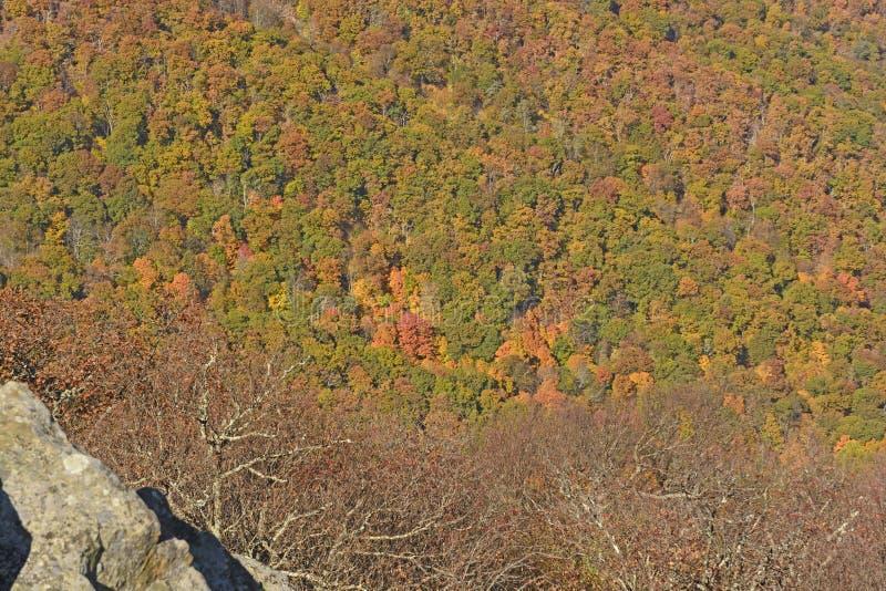 Dalingenkleuren in een Appalachian Vallei stock foto's