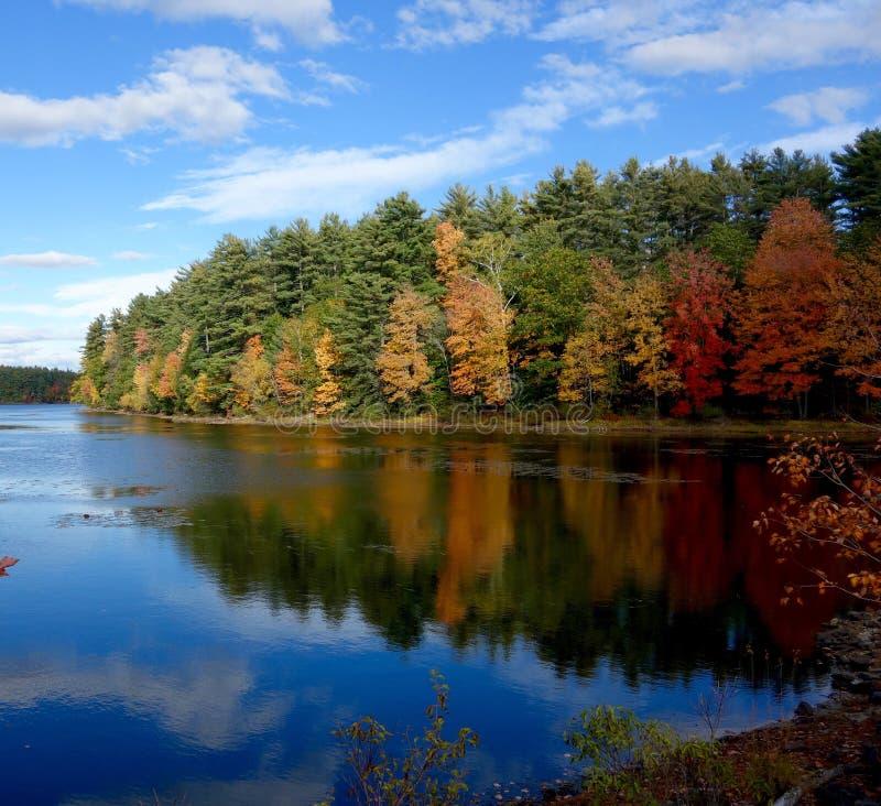 Dalingsbladeren op een schiereiland in een meer wordt weerspiegeld dat stock afbeeldingen