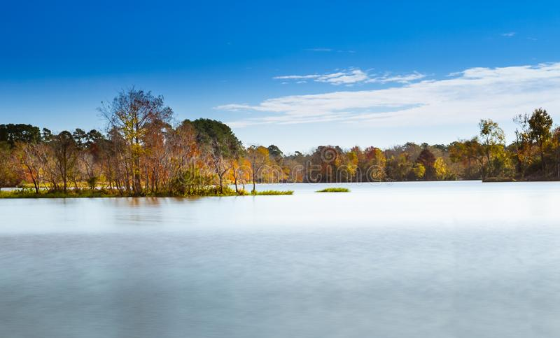 Dalingsbomen op het meer royalty-vrije stock foto