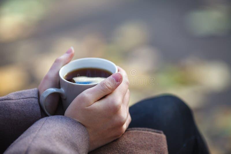 Dalingsconcept - de herfstvrouw het drinken koffie op parkbank onder stock afbeelding