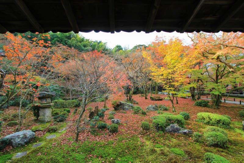 Dalingsgebladerte bij Enkoji-Tempel, Kyoto, Japan stock fotografie