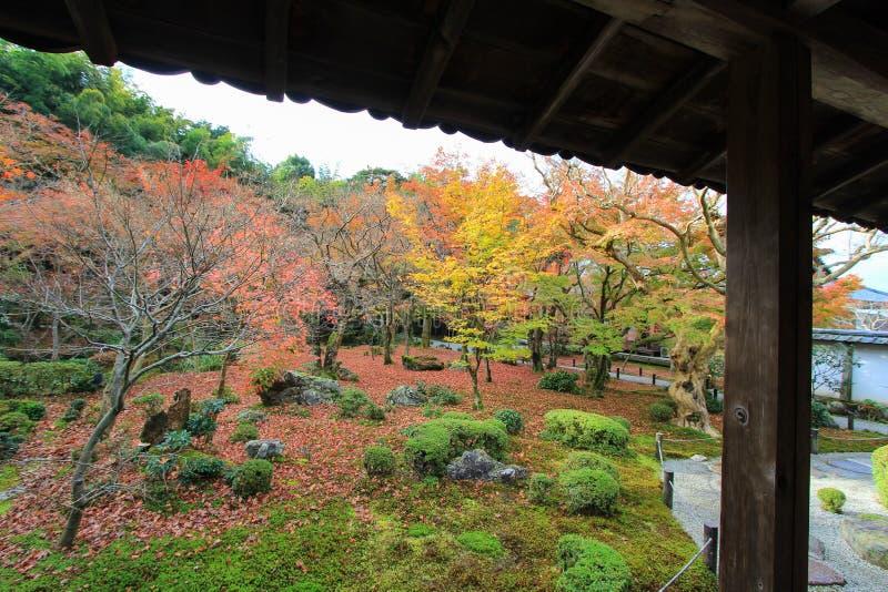 Dalingsgebladerte bij Enkoji-Tempel, Kyoto, Japan stock afbeelding
