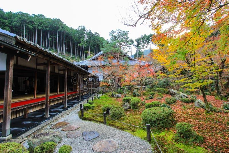 Dalingsgebladerte bij Enkoji-Tempel, Kyoto, Japan stock foto